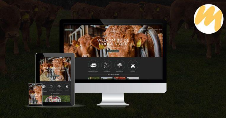 BoerenBeef te Nieuw Balinge, Drenthe | Huisstijl en webdesign Tiel door Esmy Media Design